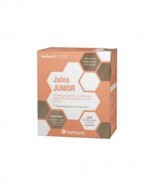 JALEA JUNIOR - 15 AMPOLAS DE 10ML