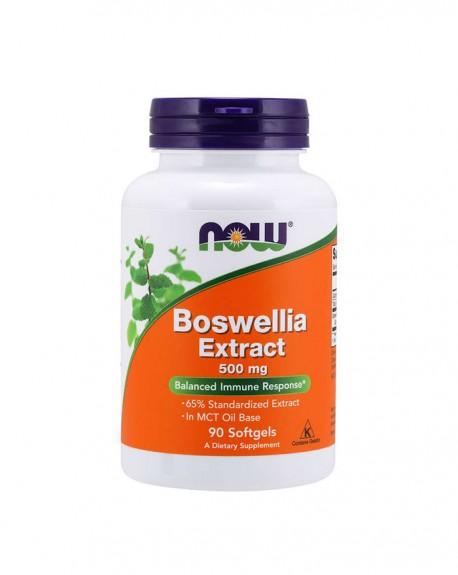 Boswellia Extract 500 mg