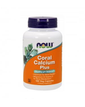 Cálcio coral - Coral calcium plus magnesium