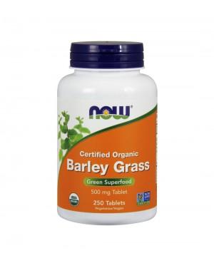 Organic barley grass (cevada orgânica)