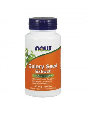 Celery circulation