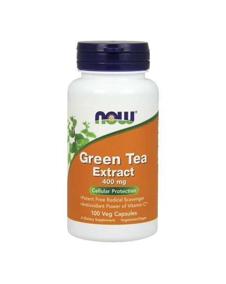 Extracto de chá verde: green tea extract