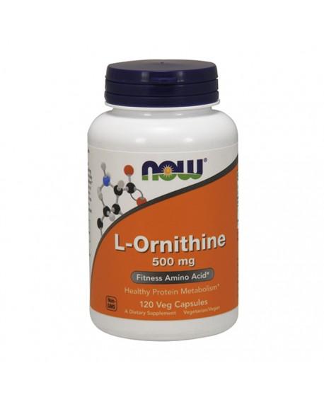 Desporto - l- ornitina (l-ornithine)